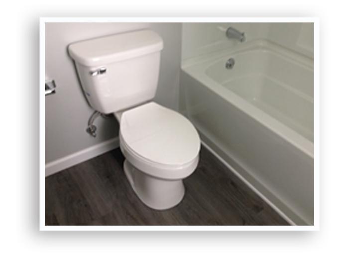 12_134 Virgina__Toilet_Display Page